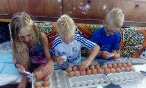 Na jachcie mamy trochę innych zajęć niż w domu na przykład obracanie i czyszczenie jajek by dłużej wytrzymały