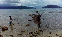 podczas odpływu można znaleźć na płyciźnie wiele ciekawych stworzeń